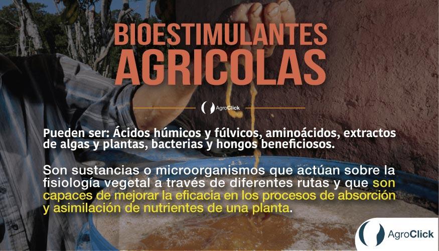 bioestimulantes,agroclick
