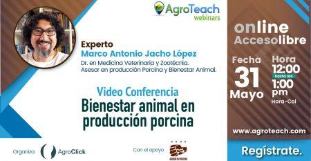 marco-antonio,agroclick,agroteach,produccion-agricola,porcicola