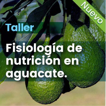 Taller: Fisiologia De Nutricion En Aguacate
