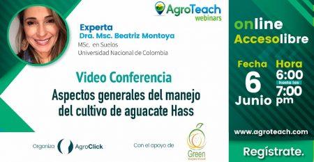 Webinar-aspectos generales del cultivo aguacate hass-agroteach-agroclick-cursos-agricultura-avocado-hass