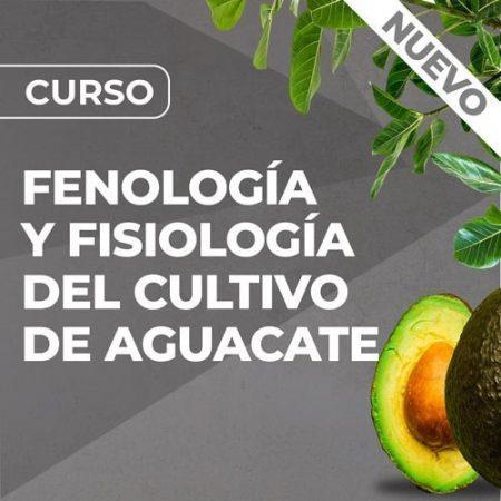 Curso de Fenología y Fisiología del Cultivo de Aguacate