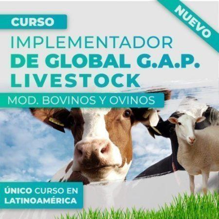 Curso Implementador de Global GAP LiveStock