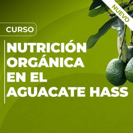 Curso Nutrición Orgánica en el Aguacate