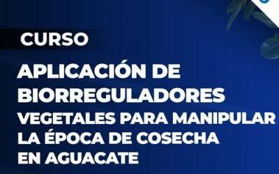 Curso Aplicacion de Biorreguladores Vegetales para manipular la epoca de cosecha en Aguacate