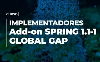 Curso Implementadores Add-On  Spring 1.1-1 Global Gap
